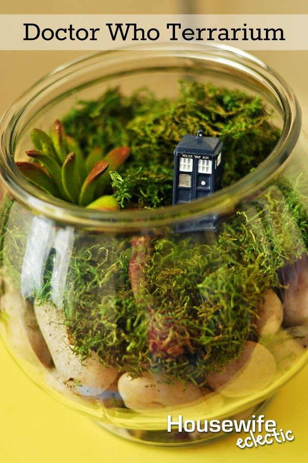 Housewife Eclectic: Doctor Who Terrarium