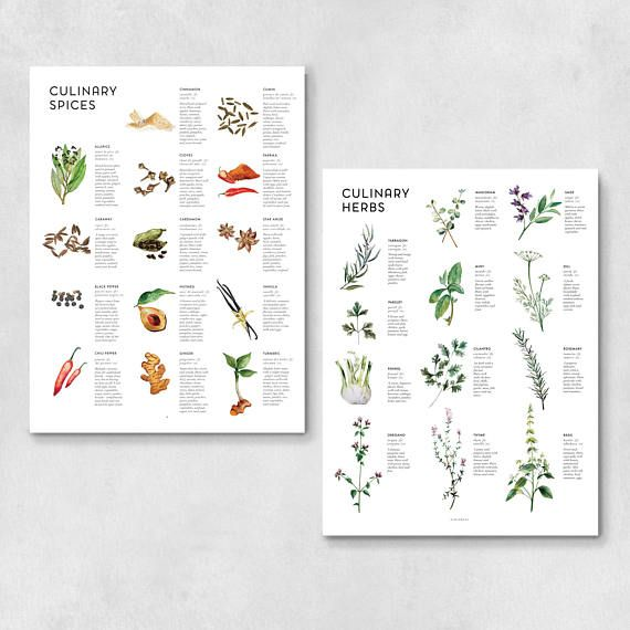 Herbs Spices Art Print Set Kitchen Wall Art Wall Decor