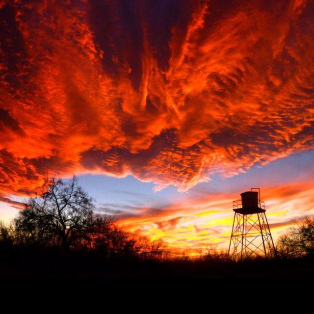 South Texas Sunset | Pics | Texas sunset, South texas ...