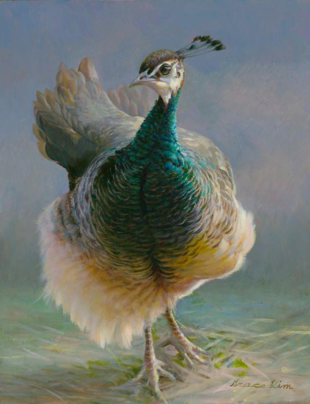 GRACE KIM Female Peacock