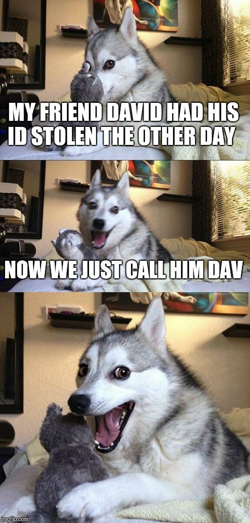 Bad Pun Dog | MY FRIEND DAVID HAD HIS ID STOLEN THE OTHER DAY NOW WE JUST CALL HIM DAV | image tagged in memes,bad pun dog | made w/ Imgflip meme maker