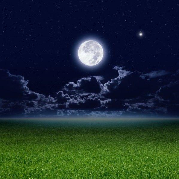La lune rousse commence http://www.pariscotejardin.fr/2014/04/la-lune-rousse-commence/