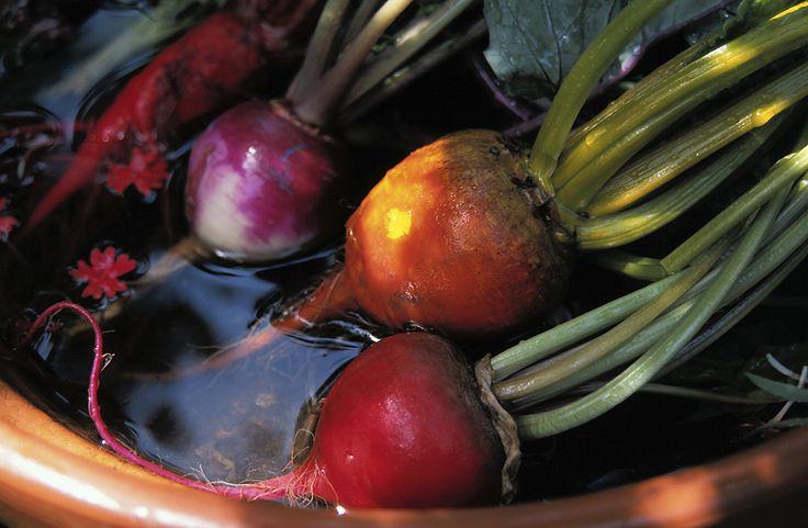 Tips on storing your vegetables through the winter for fresh garden taste! From The Old Farmer's Almanac.