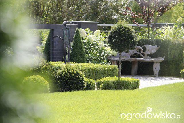 Ogród z lustrem - strona 281 - Forum ogrodnicze - Ogrodowisko