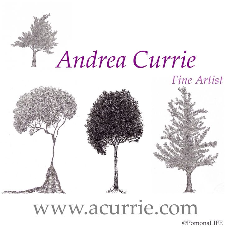 """You have extraordinary gifts how can you expect to lead an ordinary life.."" - Mother, Little Women, 1994  #acurrie #creatinglifeart #pomonalife  Learn more at:  www.acurrie.com  #torontoartist #drawing #pointillism #stippling #treeart #treelove #tree #natureart #ink #artist #art_empire #contemporaryart #artlife #artislife  #commissionart"