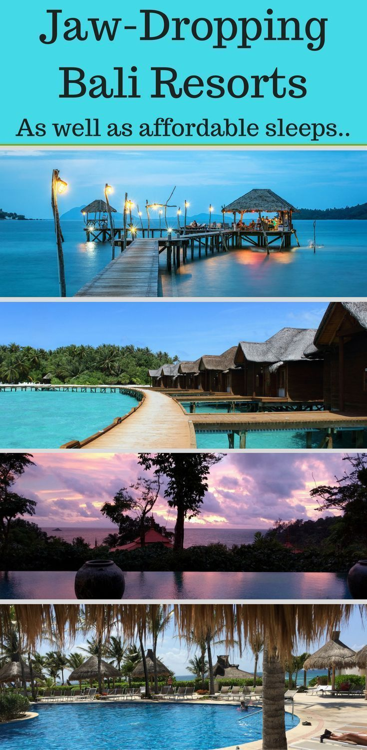 23 of the best party hostels hotels plus hotels in bali for rh pinterest com