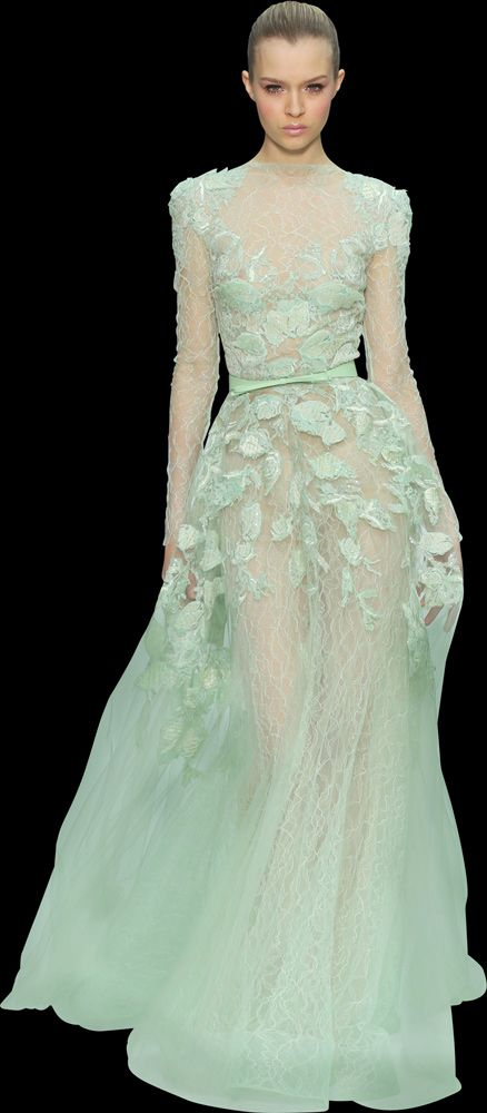 Elie Saab Evening Dress