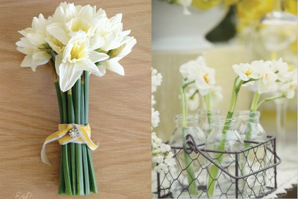dafidil Flower Arrangements for Weddings | DIY pale daffodil bouquet by Creature Comforts ; daffodil stems by ...