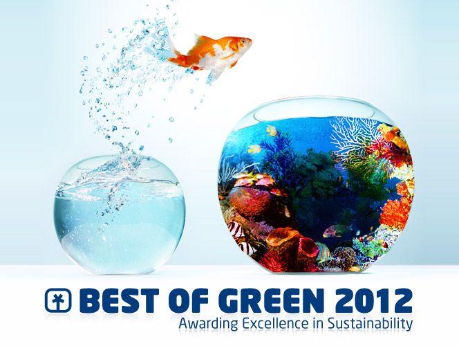 Best of Green : TreeHugger