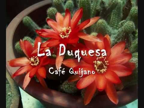 Café quijano - La Duquesa - YouTube