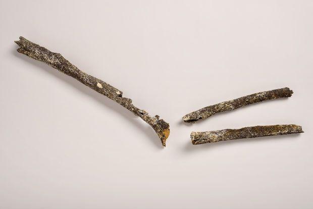 DENIS GLIKSMAN / INRAP seine maritime pre neandertalienLes 3 os longs du bras gauche d'un pré-Néandertalien (humérus, cubitus et radius) en regard d'un bras moderne retrouvé sur le site de Tourville-la-Rivière (Seine-Maritime) en 2010.  L'individu de Tourville-la-Rivière est une découverte majeure en Europe pour la connaissance du peuplement humain du nord-ouest de l'Europe