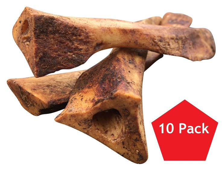 Lilly's Choice Dog Bones with Bone Marrow - Made in USA - About 7 to 8 Inch Long and 1 Inch Wide Natural Grass Fed Hickory Smoked Beef Ulna Chew Treats for a Small and Medium Puppy 10 Pack of Ulna Bones