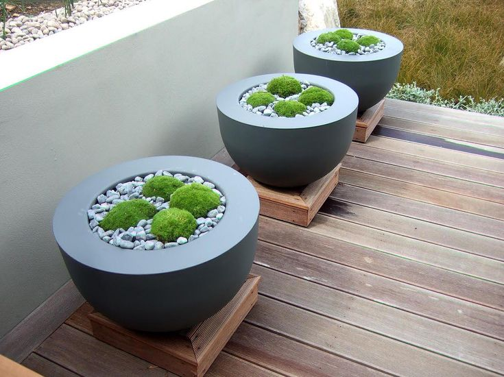 Contemporary Planters With Moss And Gravel Raised Pads On Decking   Low  White Rendered Wall Part 70