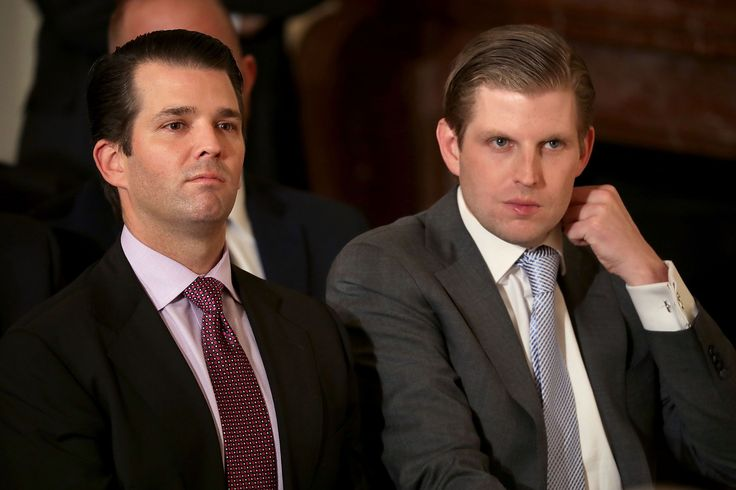 Donald Trump Jr. met with a Russian lawyer to obtain information on Hillary Clinton. The...
