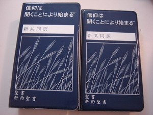 Japanese New Testament-FL (Japanese Edition)