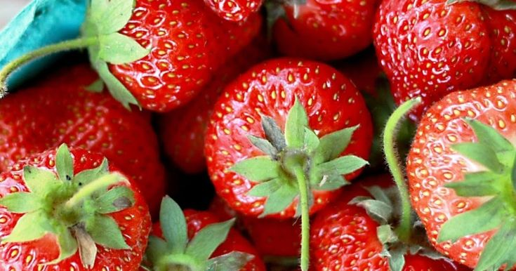 Strawberry Facts and Folklore