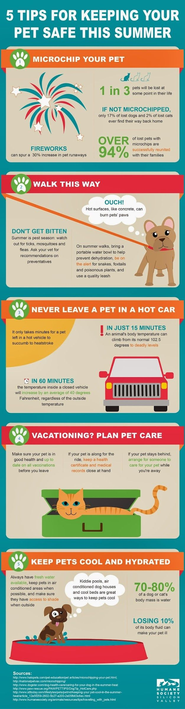 5 Tips for Keeping Your Pet Safe This Summer Infographic (Hot cement is the one people think of least.)