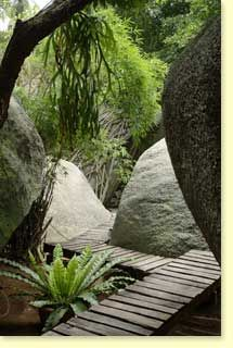 Google Image Result for http://www.tamarindretreat.com/images/forest-package.jpg