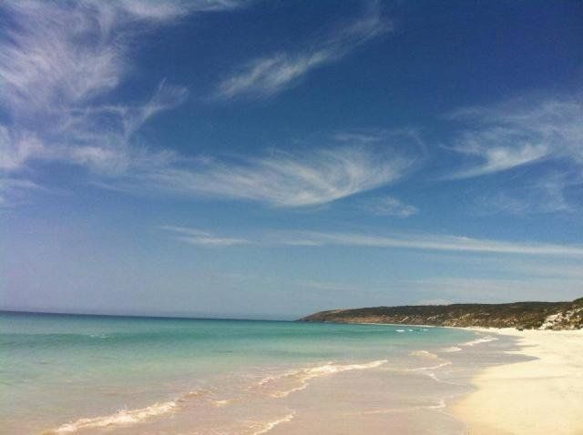 Stunning day on Kangaroo Island today, this is a pic of one of our favourite beaches, Emu bay!