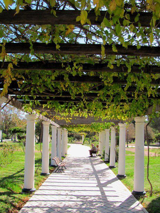 Go for a walk in San Martin Park, Mendoza, Argentina