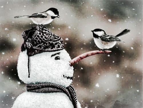 ,snowman with birds