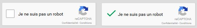 Solution reCaptcha de Google au niveau du formulaire de contact du nouveau site internet de l'association Berch-Pierre : http://www.evolutiveweb.com/actualites/articles/refonte-du-site-internet-de-l-association-berch-pierre-118.html
