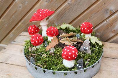 Steen i stugan: Flugsvampar