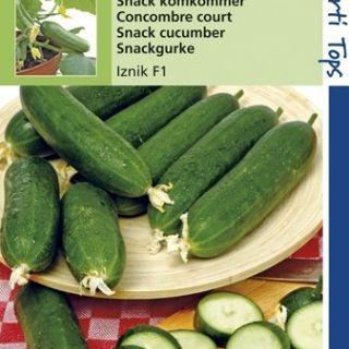 Snack komkommer Iznik (8 zaden)