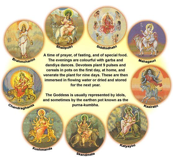 "Happy Navratri (Oct 05 - 14, 2013) या देवी सर्वभूतेषु शक्तिरुपेण संस्थिता | नमस्तस्यै नमस्तस्यै नमस्तस्यै नमो नमः || ......... ""Yaa Devi Sarva Bhuteshi Shakti Roopena Samasthita Namastasyai- Namastasyai -Namastasya -Namo Namah"" = O Divine Mother, you reside in all beings as strength and power; Salutations, salutations, salutations to thee again and again"
