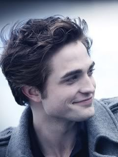I <3 Twilight Edward. Not New Moon or Eclipse or Breaking Dawn. The first movie. The hair.