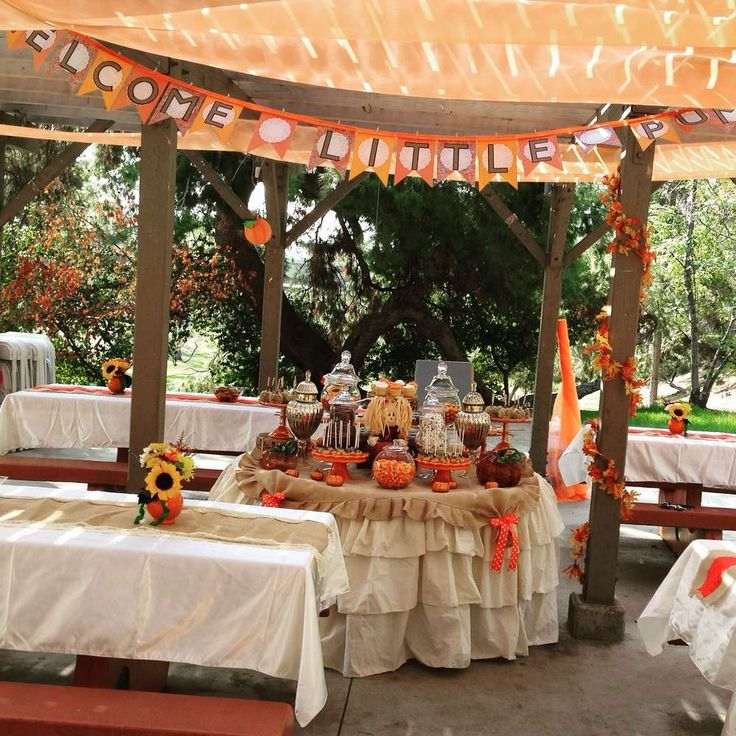 Little Pumpkin Baby Shower Baby Shower Party Ideas