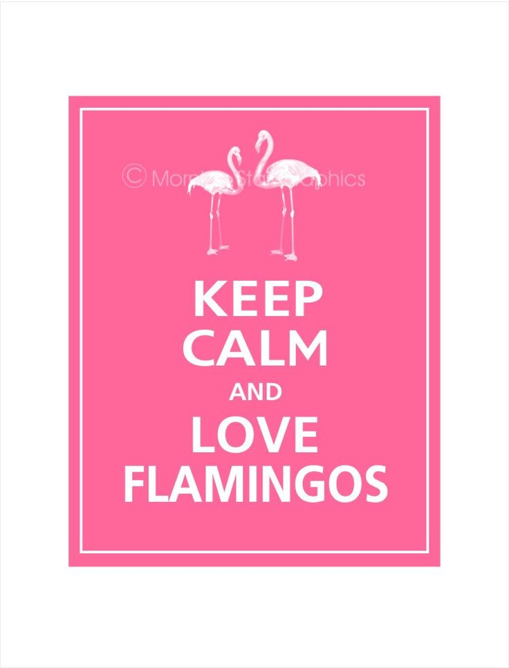 Keep Calm and LOVE FLAMINGOS Print 8x10 Flamingo Pink by PosterPop, $10.95