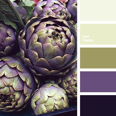 dark purple, dark-violet, green, house color choice, house color schemes, olive, olive green shades, pale olive, purple, shades of purple.