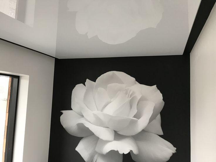 Ninapinta kiiltävä valkoinen sisäkatto ja Ninapinta valokuvatapetti