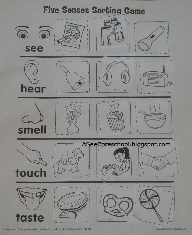 A, Bee, C, Preschool: Cinco de Mayo and Five Senses Unit.... Use this as  a take home worksheet for my lesson plan