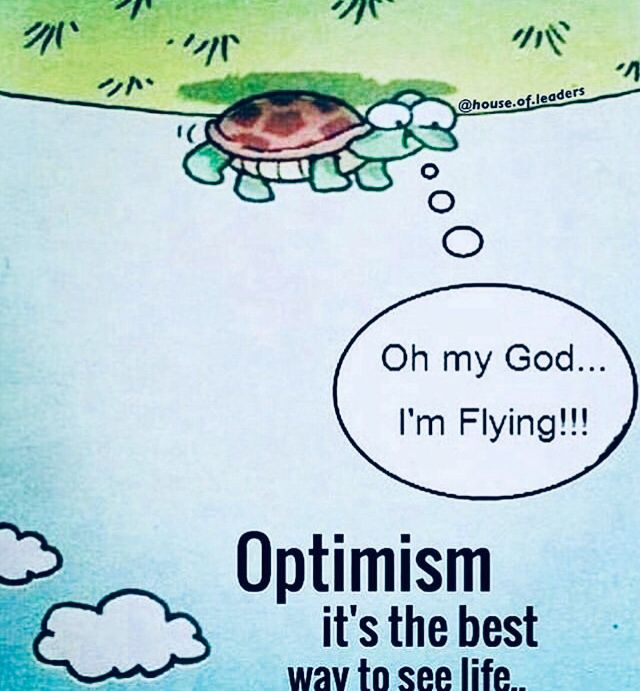 Ninefrogs Optimism Funny Quotes Funny