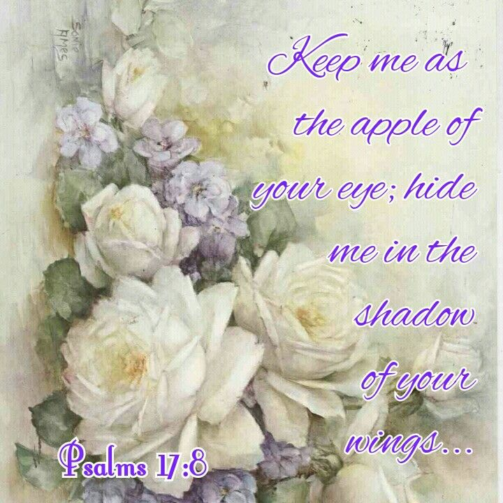 Psalm 17:8. ...hide me in the shadow of your wings. (This is my heartfelt prayer to God...I want to remain under the protection of His wings until I go to be with Him forever in heaven)