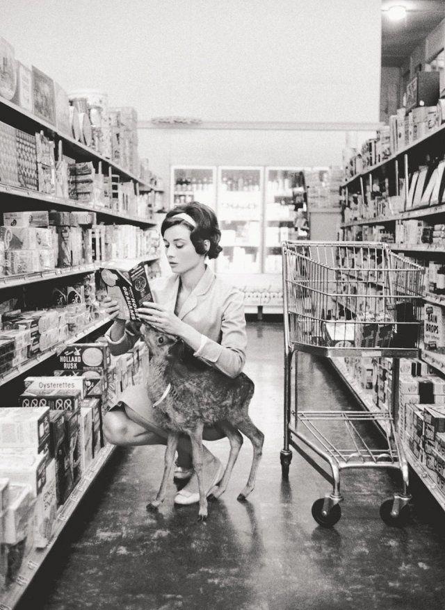 """theniftyfifties:  Audrey Hepburn shopping with her pet deer """"Ip"""" in Beverly Hills, CA, 1958."""
