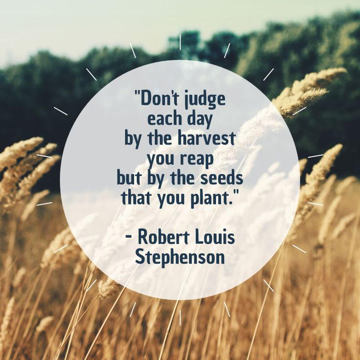"""Don't judge each day by the harvest you reap but by the seeds that you plant."" Robert Louis Stephenson"