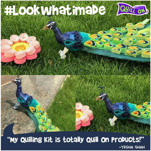 #Lookwhatimade - an awesome creation featuring a 3D peacock with the special Quilled Peacock Feather coils - Yesha Shah - you are our lucky winner for the #Lookwhatimade contest! For those who wish to participate - share your awesome quilling creations with #Lookwhatimade. Lucky winner every month! For those who wish to learn this special technique of coils, check out: https://www.letsquillon.com/collections/paper-quilling-peacock-photo-frame