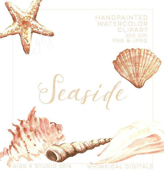 Bord de mer clipart aquarelle  romantique  été coquillages