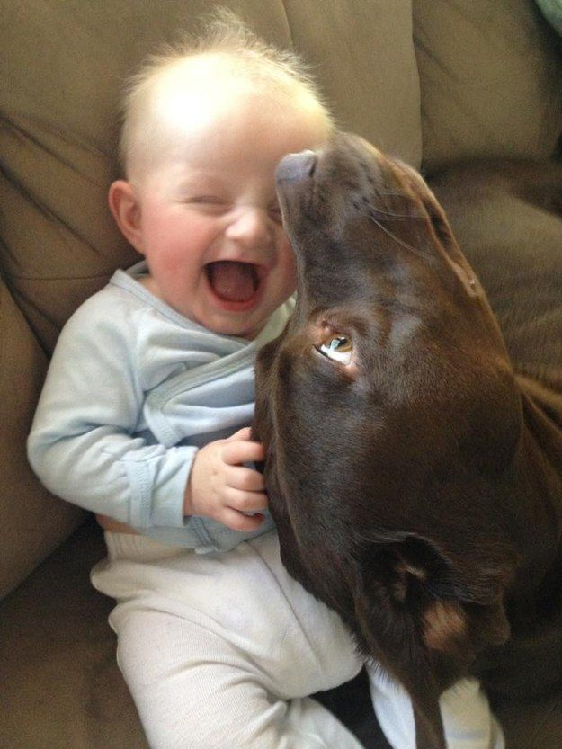 A goofy dog successfully entertaining a baby: | 30 Animal Pictures That Will Make You A Better Person