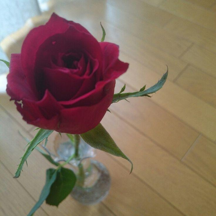 赤薔薇一輪挿し…