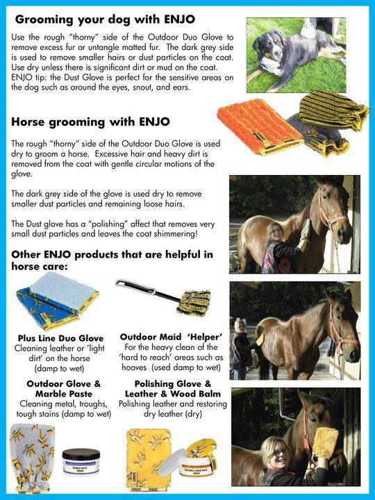 Bathing your Horse & Dogs with ENJO - if the chemical free way to care for your pets.