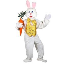 Easter Bunny Costume Idea