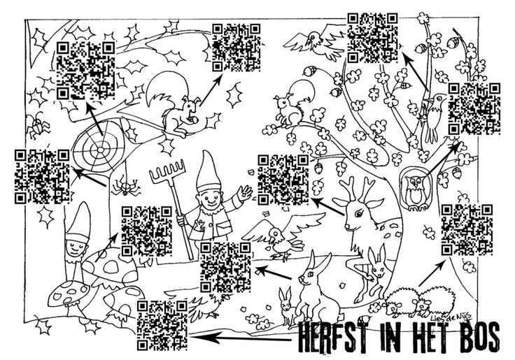 qr herfst in het bos jpg box in het bos onderwijs