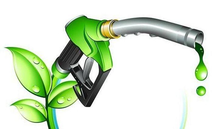 Biofuel: un alternativa ecosostenibile