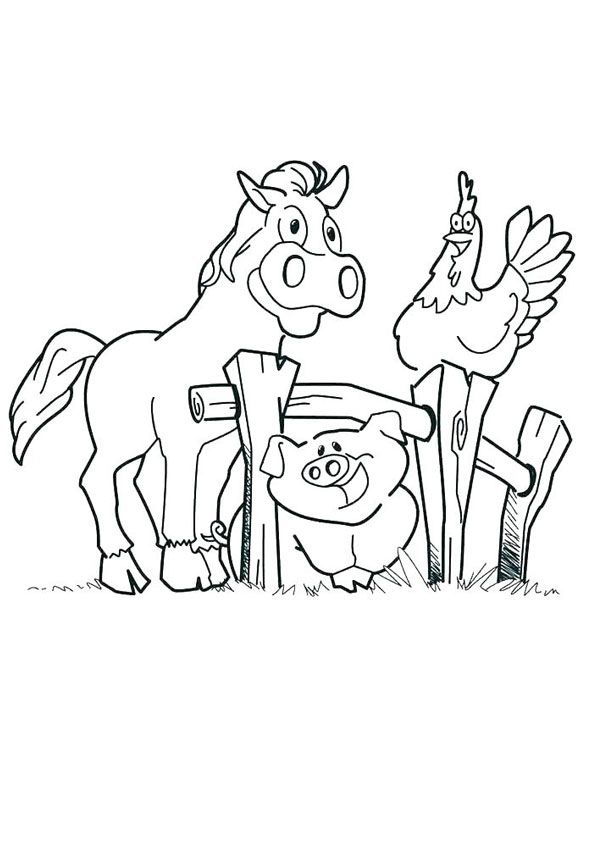 Farm Zoo Coloring Page Zoo Coloring Pages Coloring Pages Farm Coloring Pages