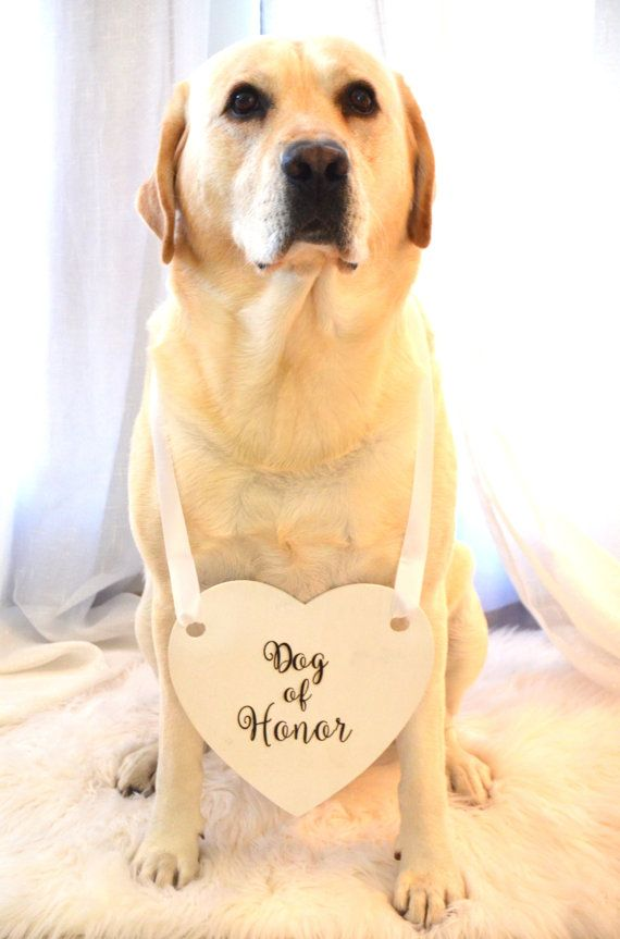 Dog Of Honor Engraved Wedding Sign With Ribbon by KimeeKouture