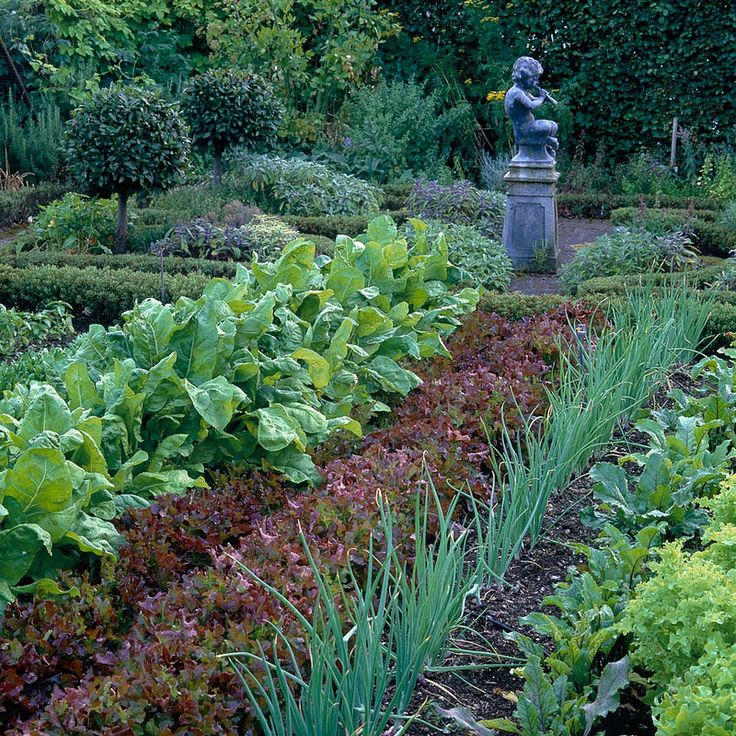 French Kitchen Garden: French Country Images On Pinterest